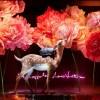 La nouvelle collaboration Sofia Coppola et Louis Vuitton pour Le Bon Marché