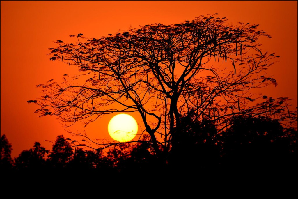 13-sunset-west-bengal-india-PHOTOCROWD-SUN
