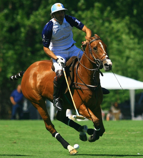 Adolfo-Cambiaso_Polo-Action